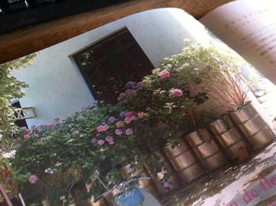 パリジャンたちの庭と花3