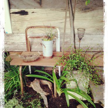 庭掃除と模様替え