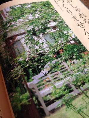 果樹ですてきな庭づくり2