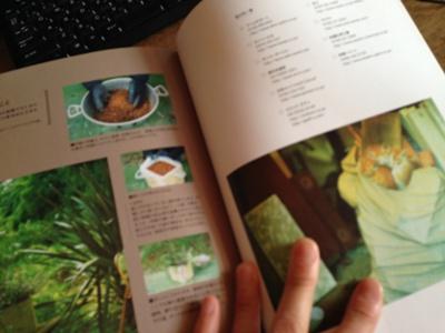 オールドテイストの家具と庭4