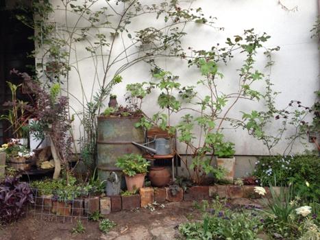 My Garden 玄関前
