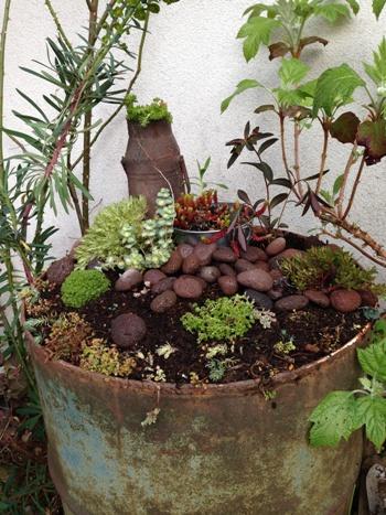 My Garden 玄関前1