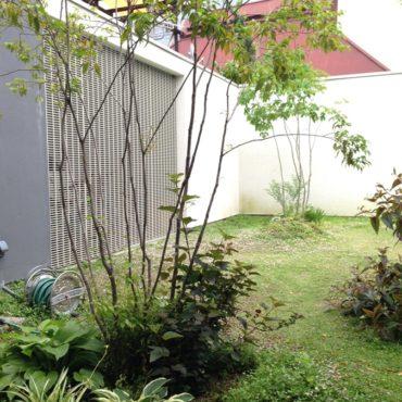 植物との暮らしを楽しむ庭