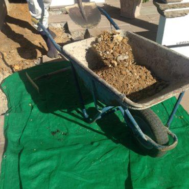 粘土質の土壌