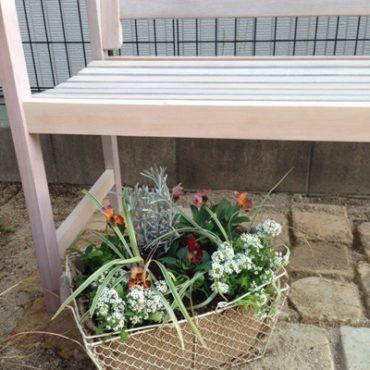 春まで楽しむ寄せ植え