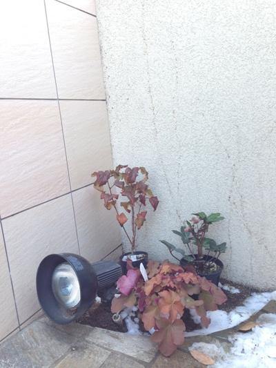 広島市西区 Kさま邸