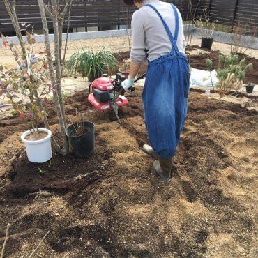 土壌改良中・・・